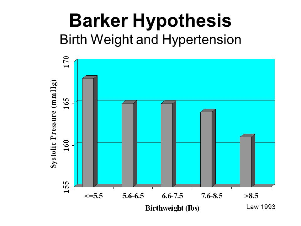 Barker Hypothesis Birth Weight and Hypertension
