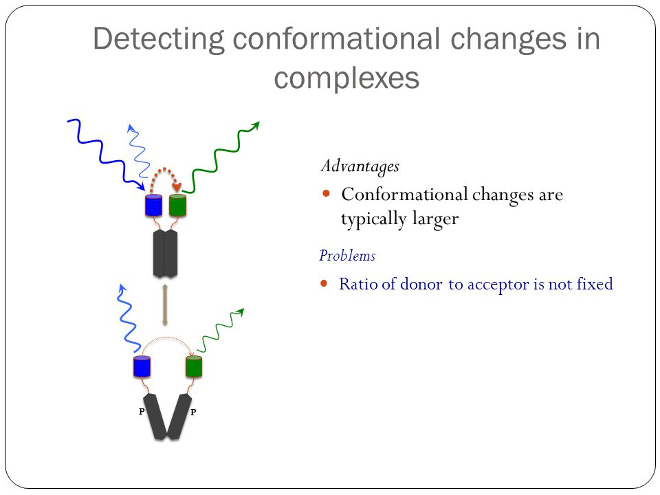 Detecting conformational changes in complexes