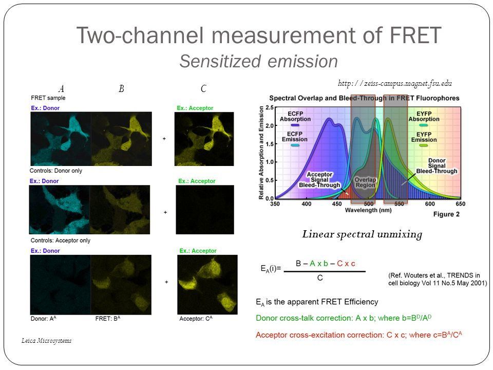 Two-channel measurement of FRET Sensitized emission