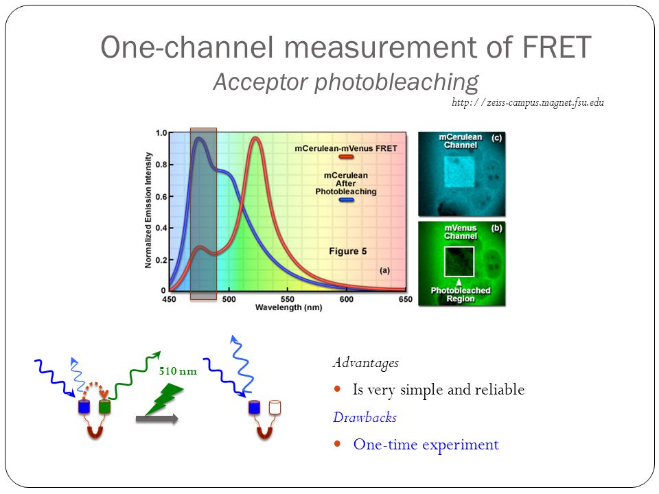 One-channel measurement of FRET Acceptor photobleaching