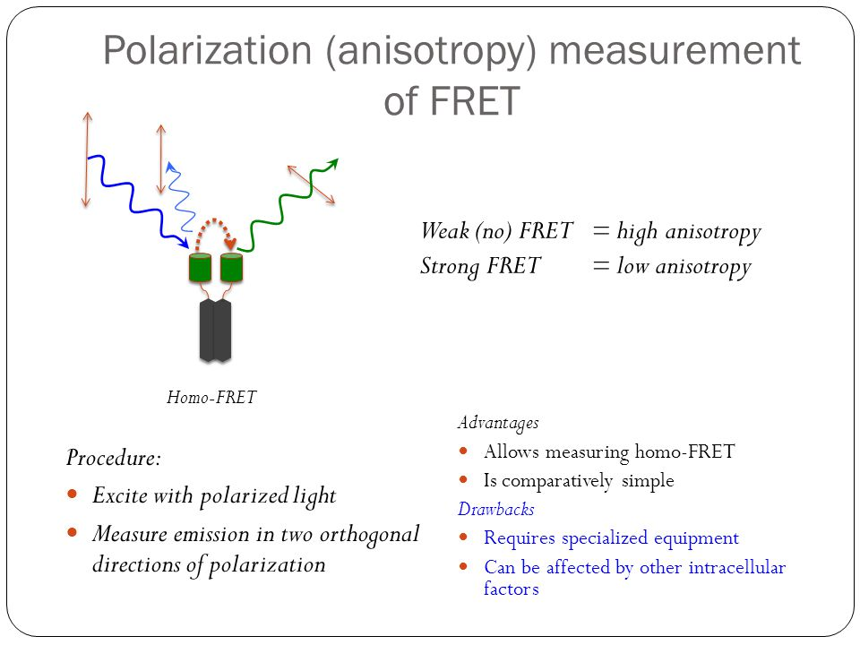 Polarization (anisotropy) measurement of FRET