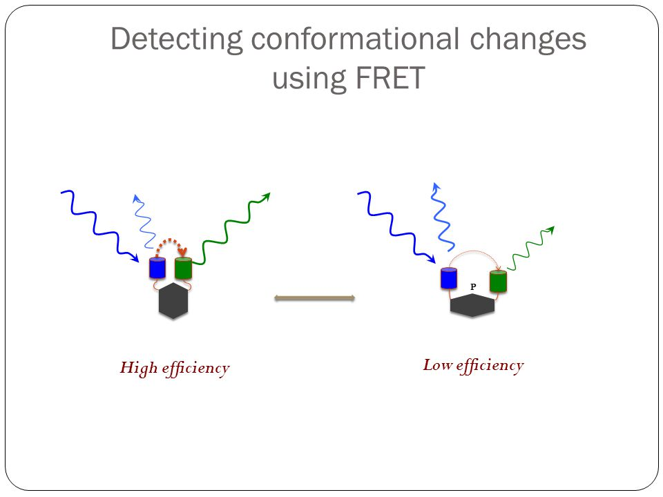Detecting conformational changes using FRET
