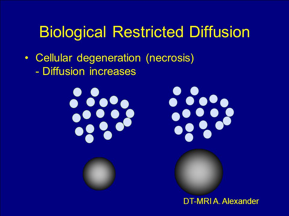 Biological Restricted Diffusion