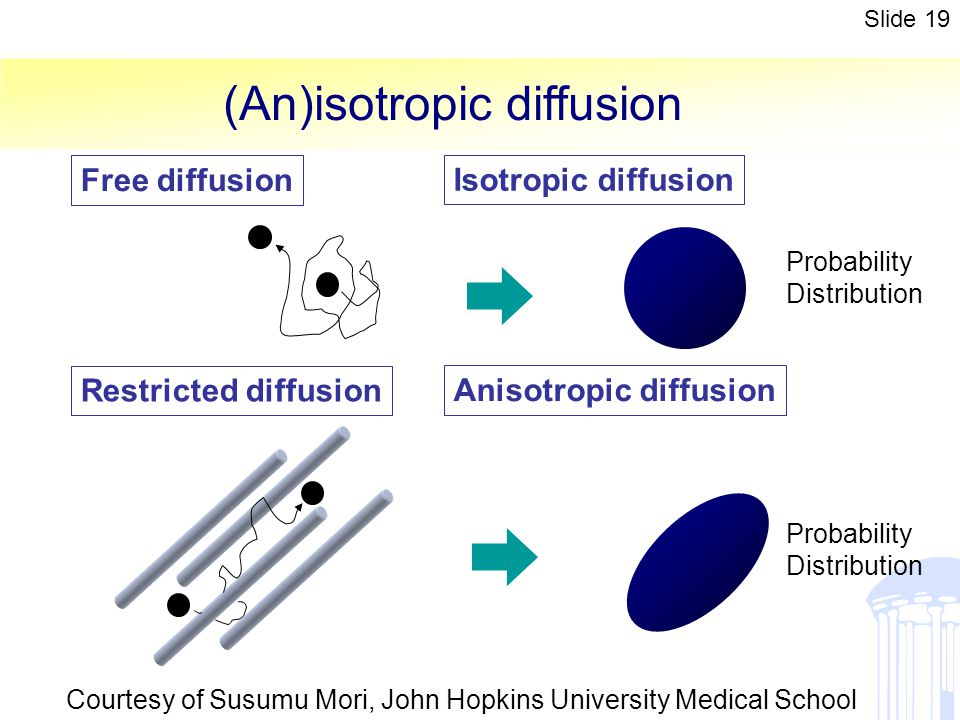 (An)isotropic diffusion