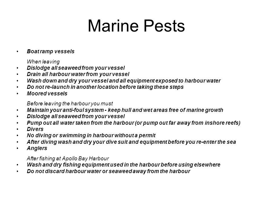 Marine Pests Boat ramp vessels When leaving