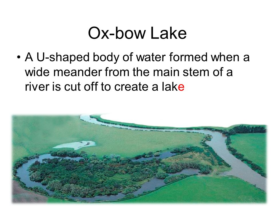 Ox-bow Lake A U-shaped body of water formed when a wide meander from the main stem of a river is cut off to create a lake.
