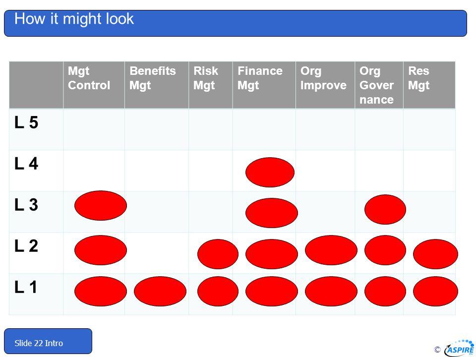 L 5 L 4 L 3 L 2 L 1 How it might look Mgt Control Benefits Mgt Risk