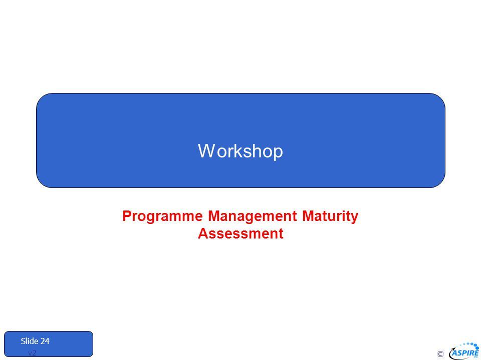 Programme Management Maturity Assessment