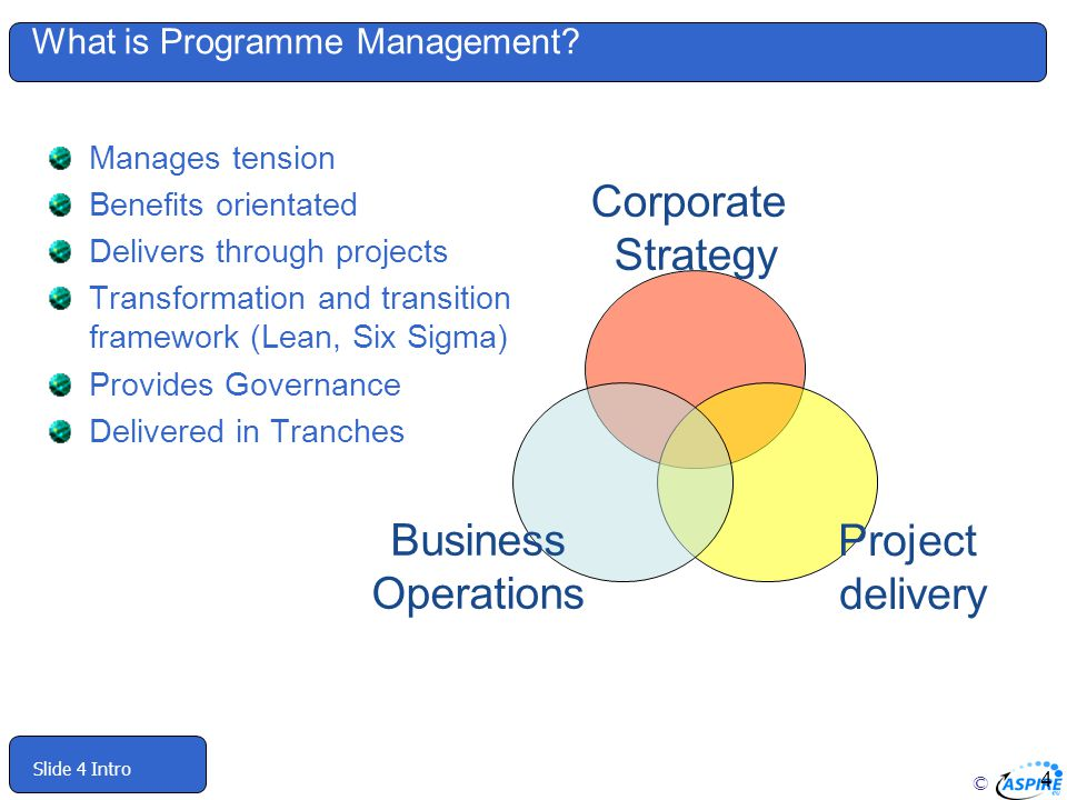 What is Programme Management
