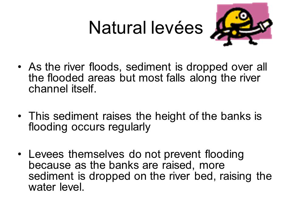 Natural levées As the river floods, sediment is dropped over all the flooded areas but most falls along the river channel itself.
