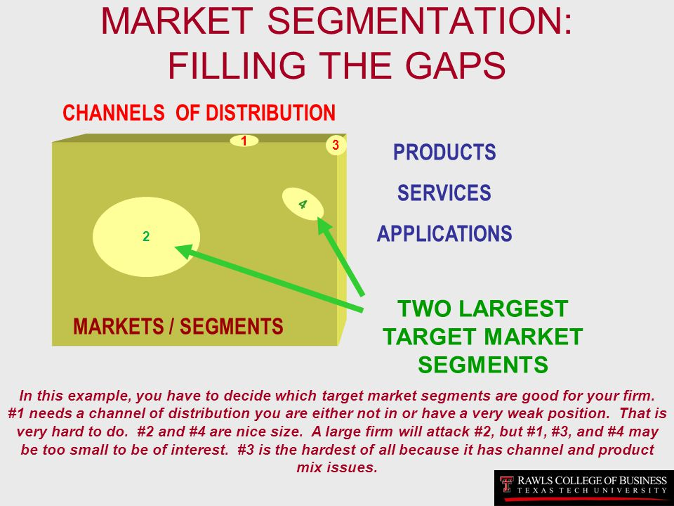 MARKET SEGMENTATION: FILLING THE GAPS
