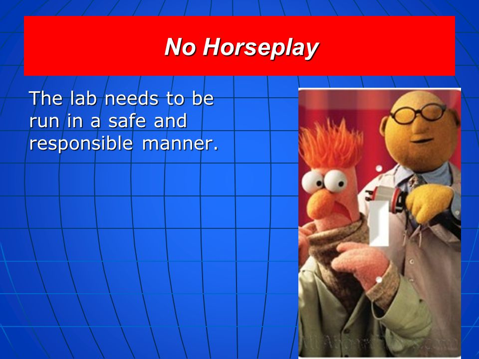 No Horseplay The lab needs to be run in a safe and responsible manner.