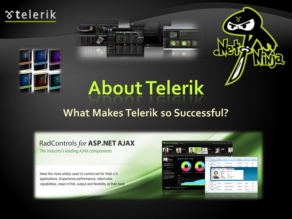 What Makes Telerik so Successful