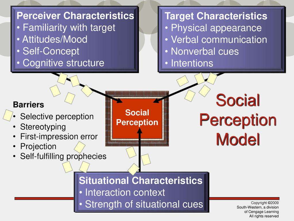 Personality, Perception, and Attribution - ppt download