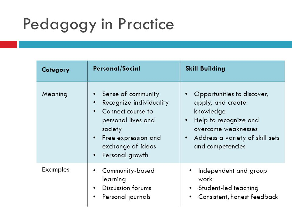 Pedagogy in Practice Category Personal/Social Skill Building Meaning