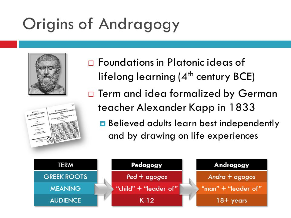 Origins of Andragogy Foundations in Platonic ideas of lifelong learning (4th century BCE)