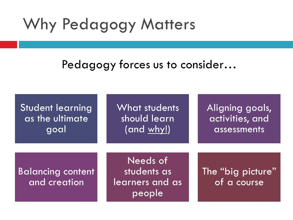 Why Pedagogy Matters Pedagogy forces us to consider…