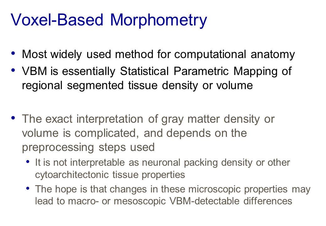 Voxel-Based Morphometry
