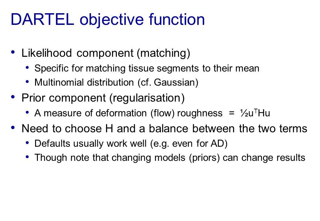 DARTEL objective function