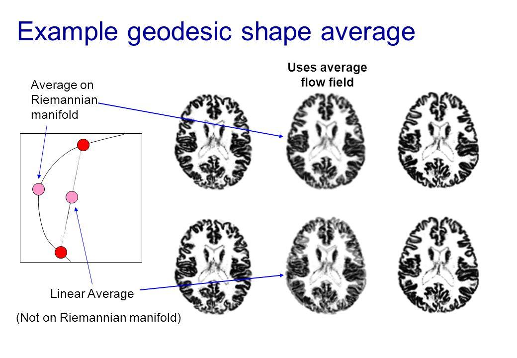 Example geodesic shape average