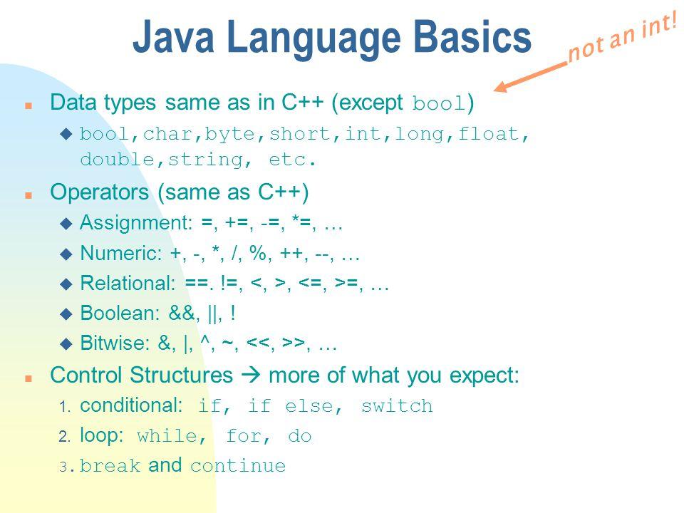 Java Language Basics not an int!