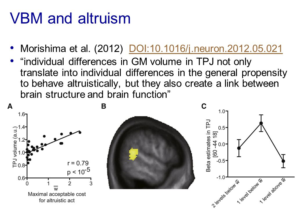 VBM and altruism Morishima et al. (2012) DOI:10.1016/j.neuron.2012.05.021.