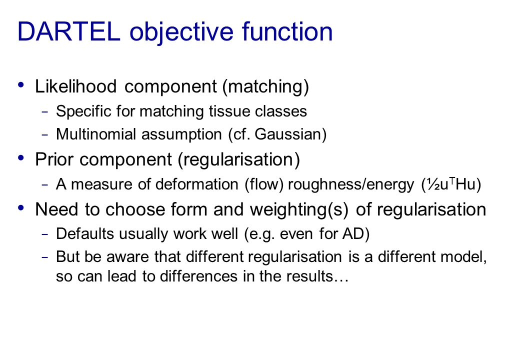 DARTEL objective function