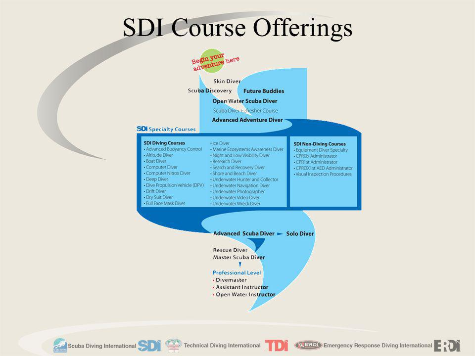 SDI Course Offerings