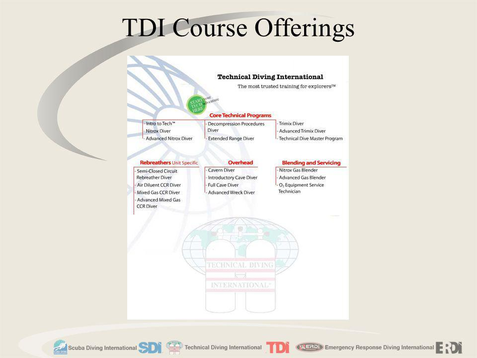 TDI Course Offerings