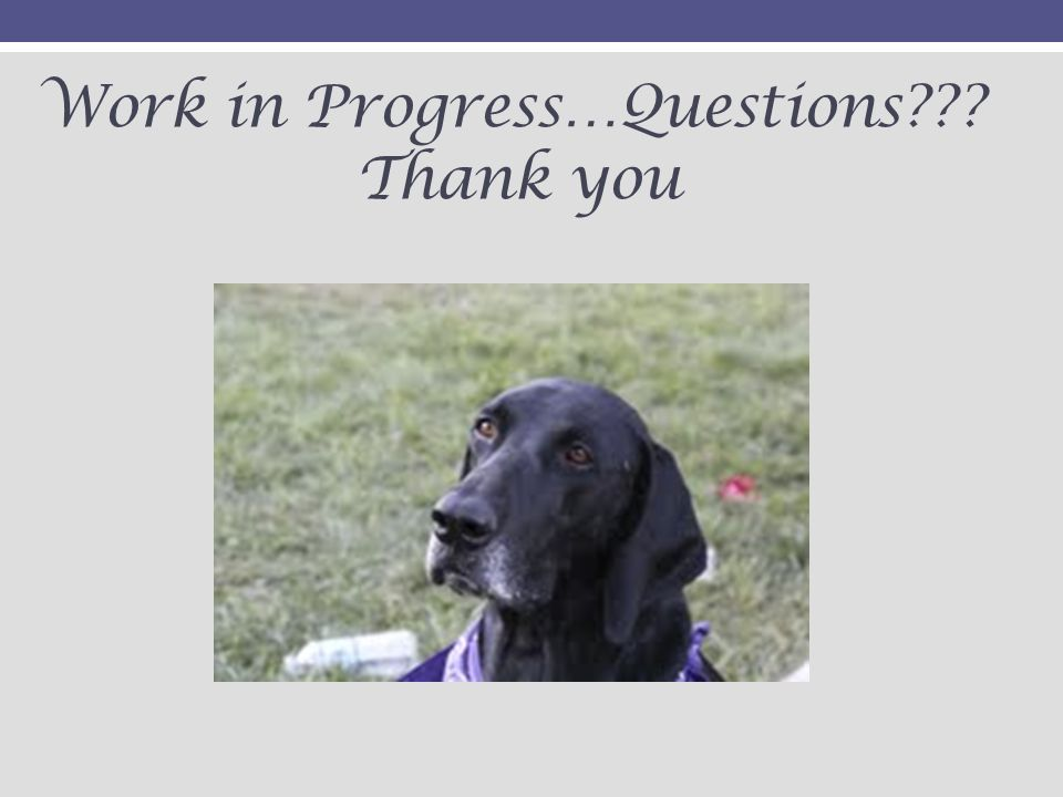 Work in Progress…Questions Thank you