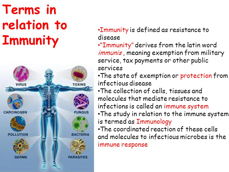 Terms in relation to Immunity
