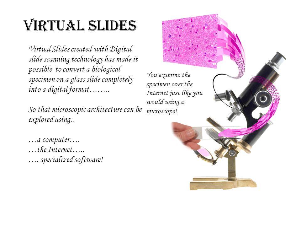 Virtual Slides