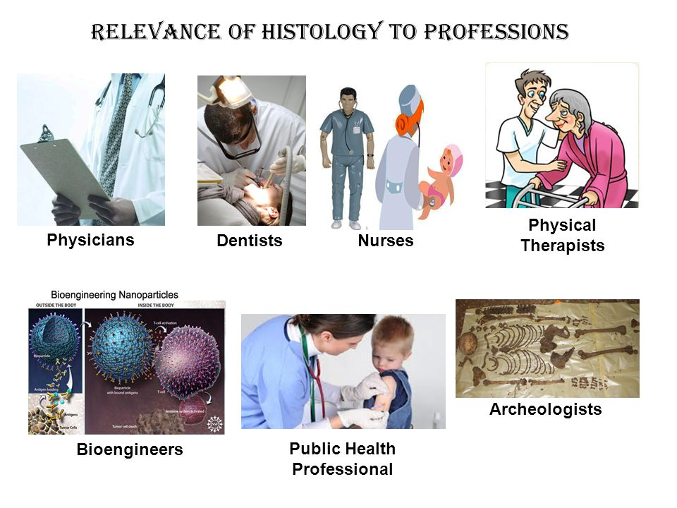 Relevance of Histology to Professions