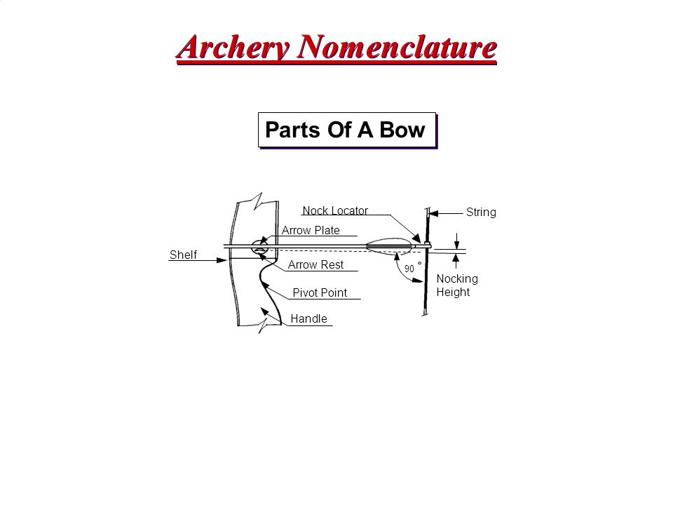 Archery Nomenclature Parts Of A Bow Nock Locator String Arrow Plate