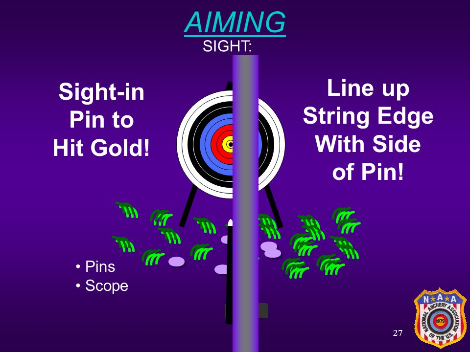 AIMING Line up Sight-in String Edge Pin to With Side Hit Gold! of Pin!