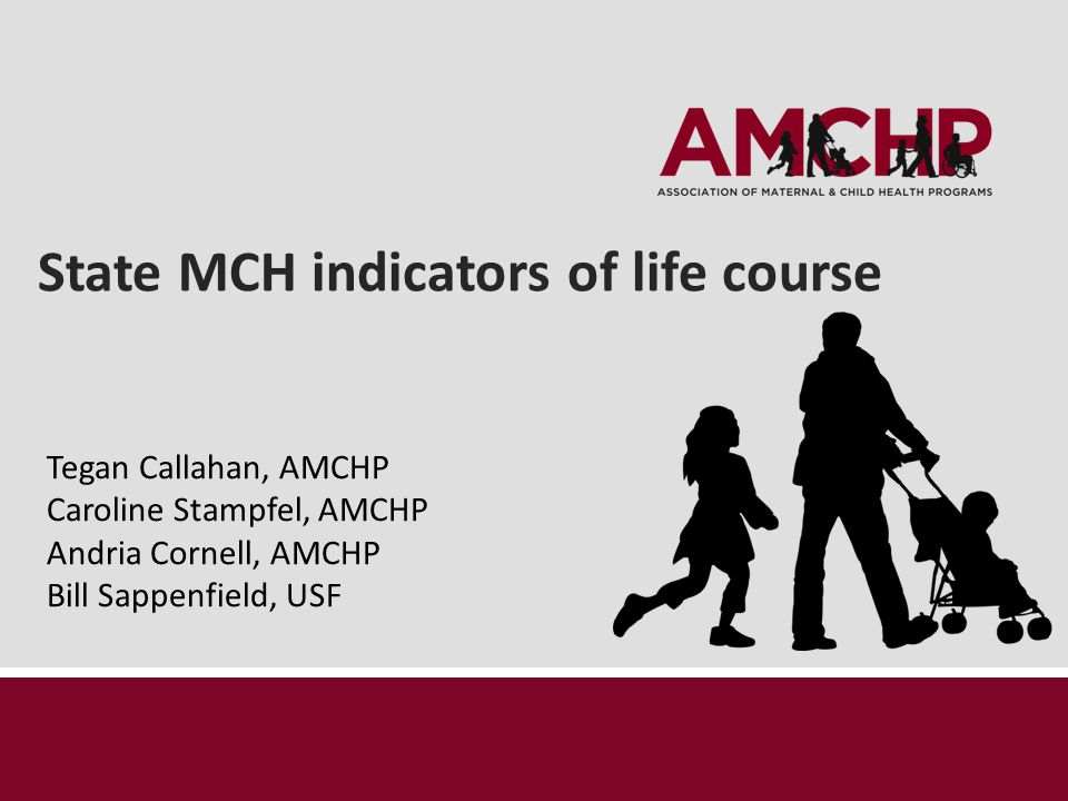 State MCH indicators of life course