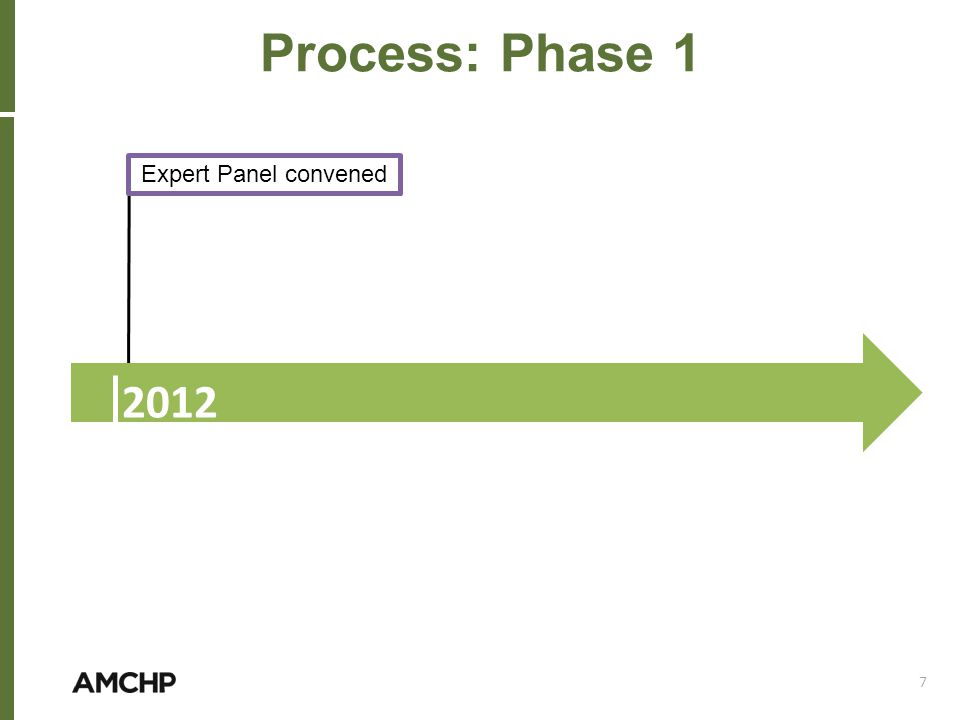 Process: Phase 1 2012 Expert Panel convened