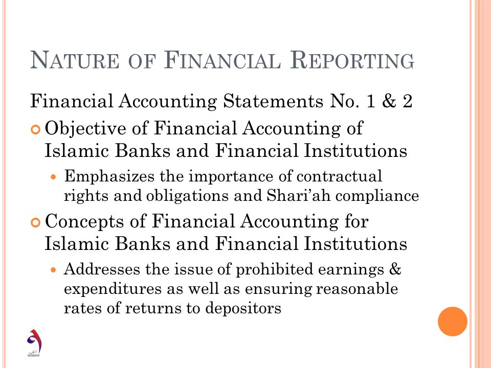 Nature of Financial Reporting