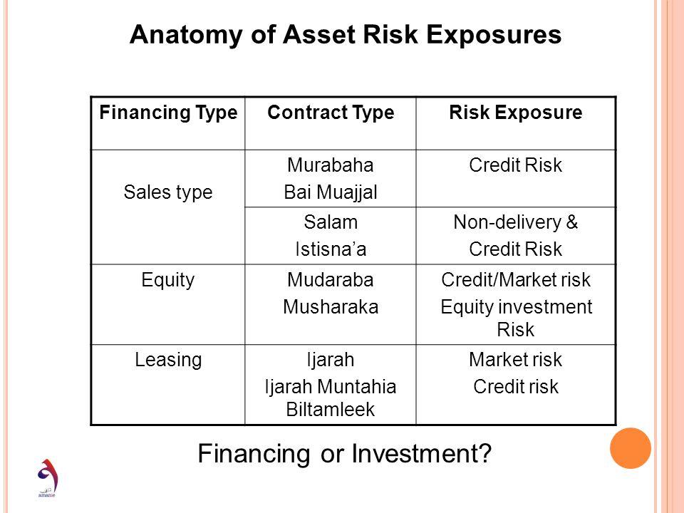 Anatomy of Asset Risk Exposures