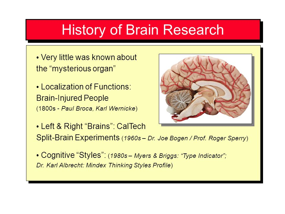 History of Brain Research