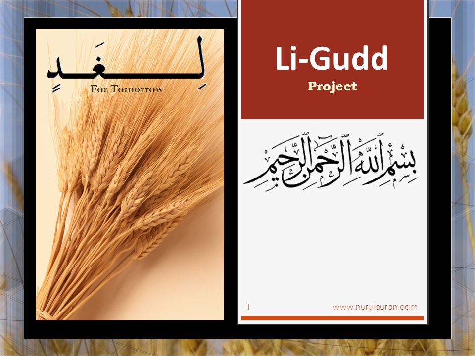 Li-Gudd For Tomorrow Project www.nurulquran.com