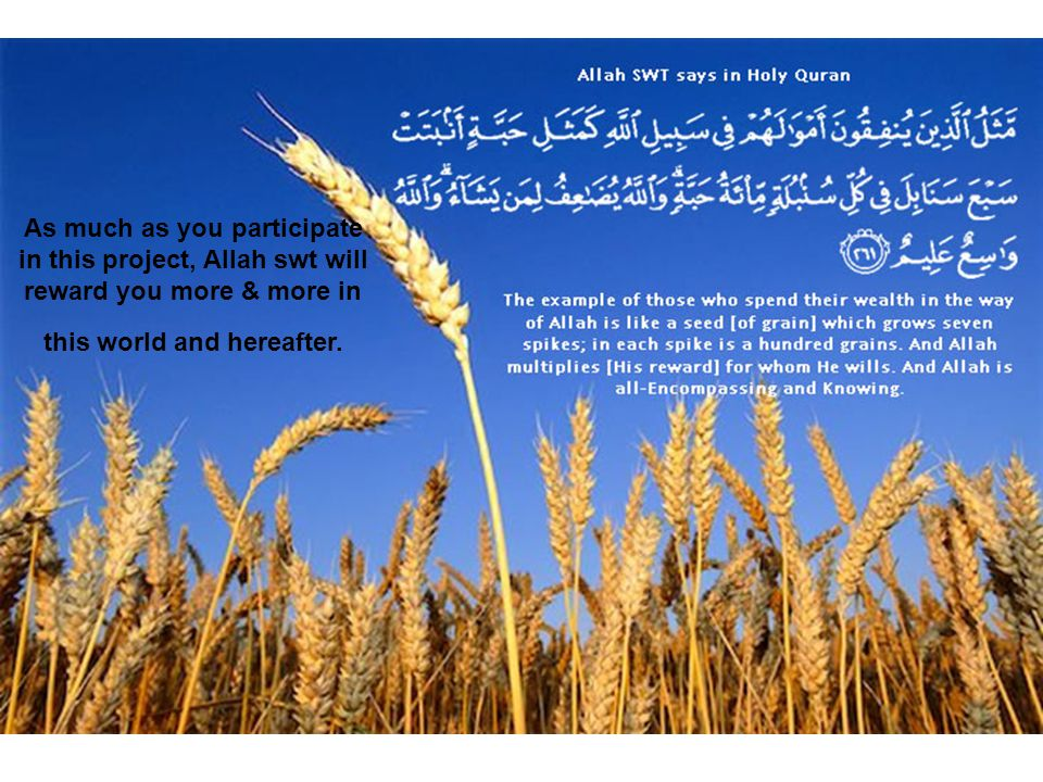 As much as you participate in this project, Allah swt will reward you more & more in this world and hereafter.