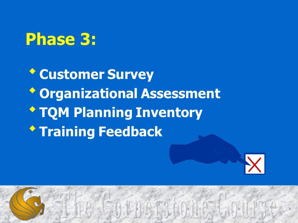 Phase 3: Customer Survey Organizational Assessment