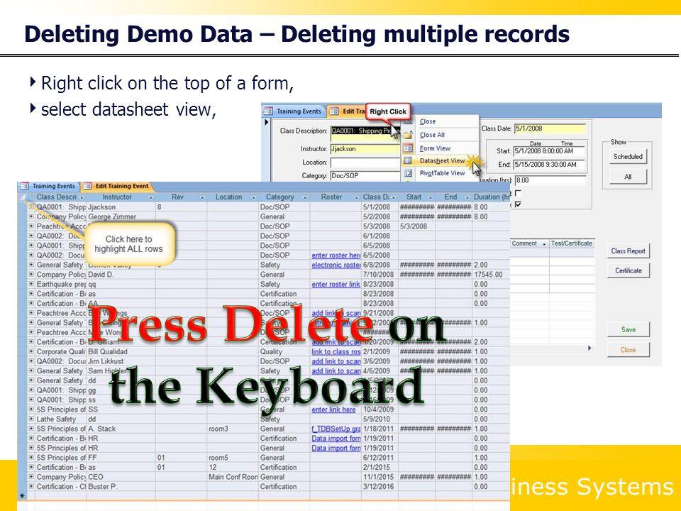 Deleting Demo Data – Deleting multiple records