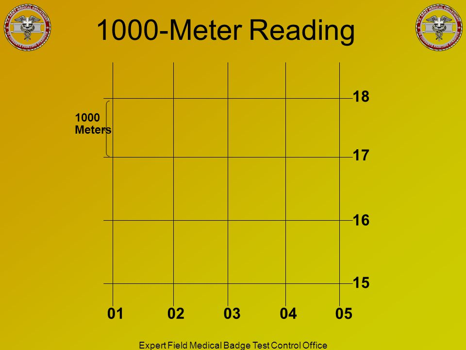 Meter Reading Practice Test : Prepared by sfc chase and fortune ppt download