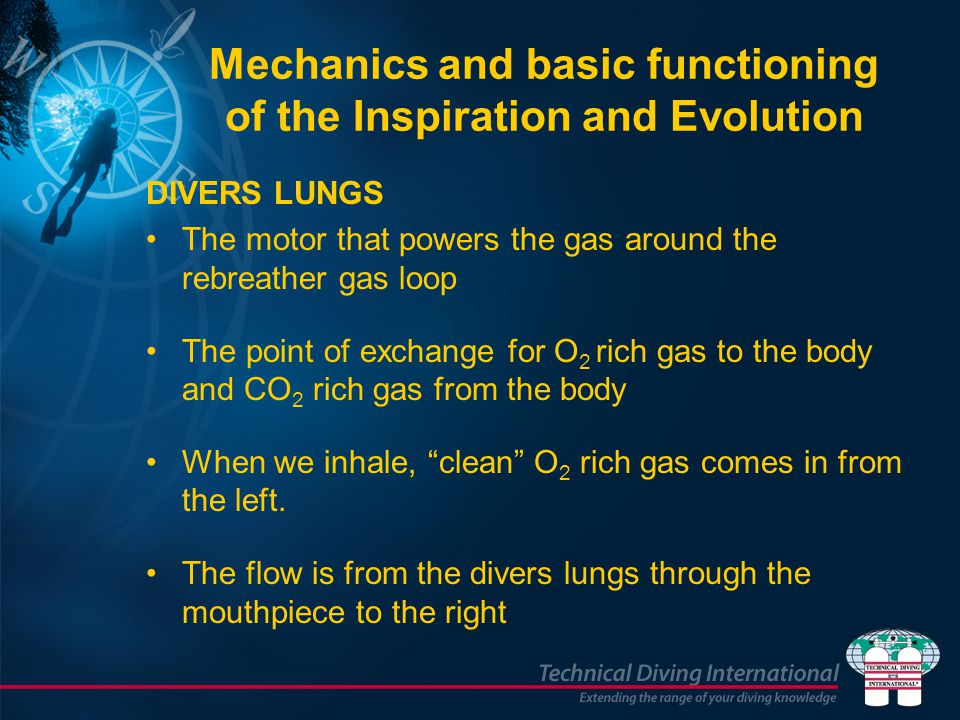 Mechanics and basic functioning of the Inspiration and Evolution
