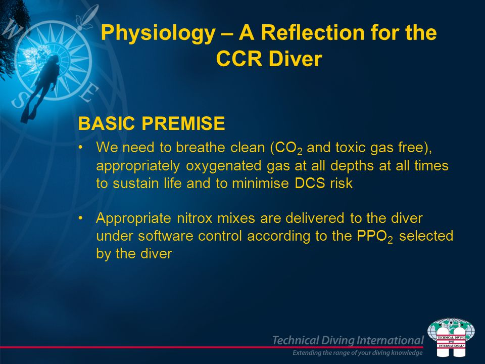 Physiology – A Reflection for the CCR Diver