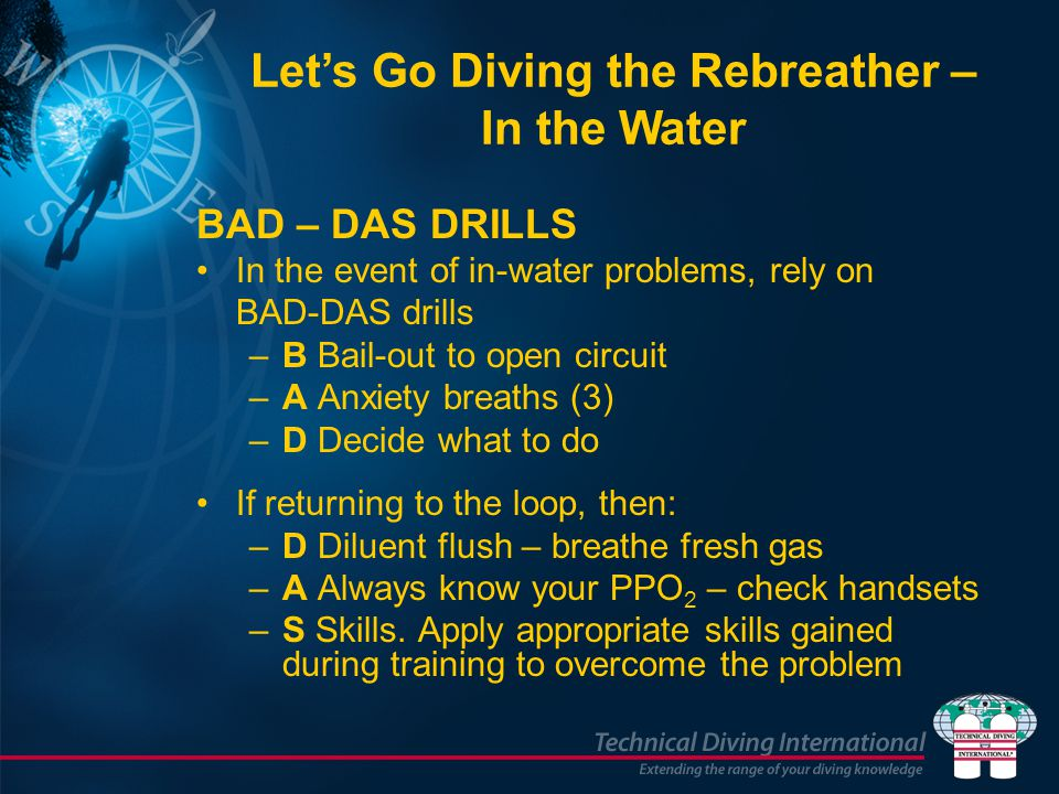 Let's Go Diving the Rebreather – In the Water