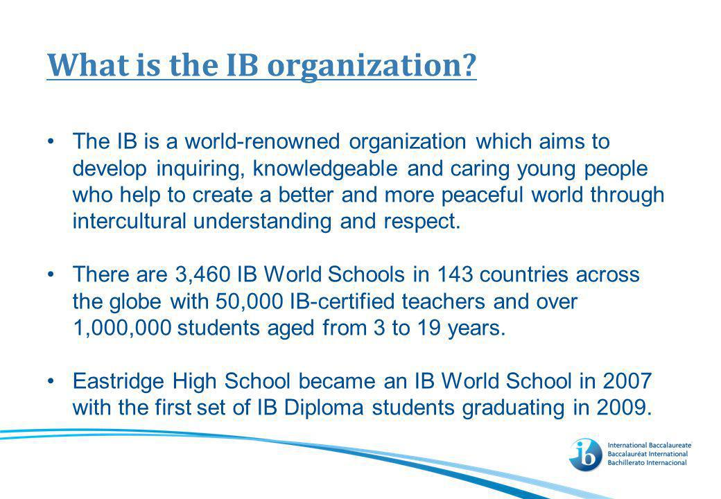 What is the IB program