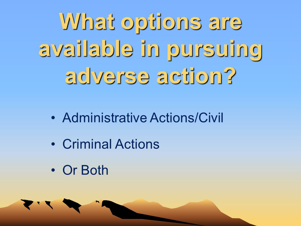 What options are available in pursuing adverse action